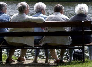 fadil novalic rast penzije fbih