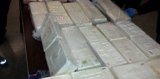 zapljena kokain crna gora