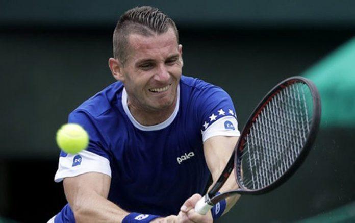 bh teniser, tomislav brkic wimbledon duble