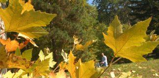 lijep dan jesenj tuzlaci svjez zrak
